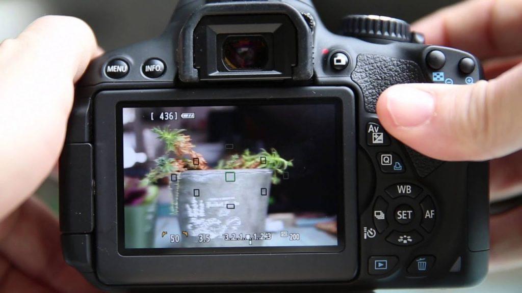 Фотографирование.