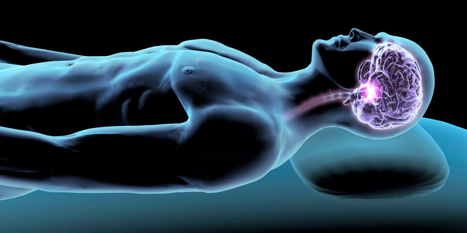 Ночная активность мозга.