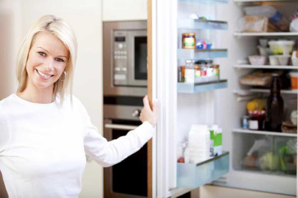 Какой холодильник лучше — однокомпрессорный или двухкомпрессорный?