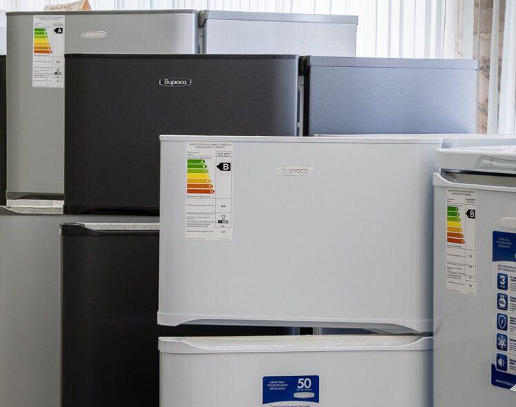 Модели холодильников «Бирюса».