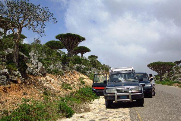 Toyota Land Cruiser 80,