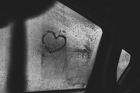 Авто-влажность4