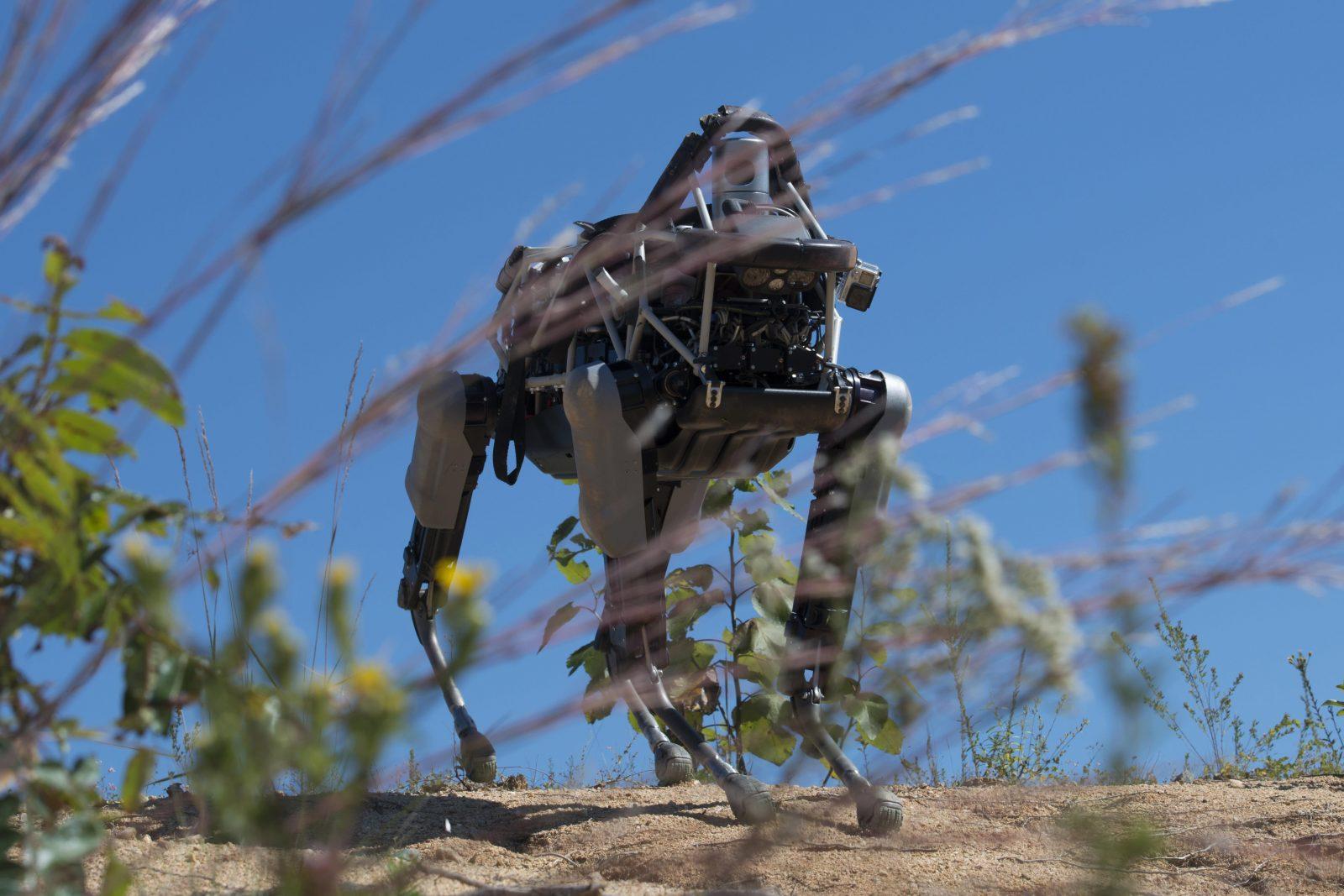 Робот-собака Spot