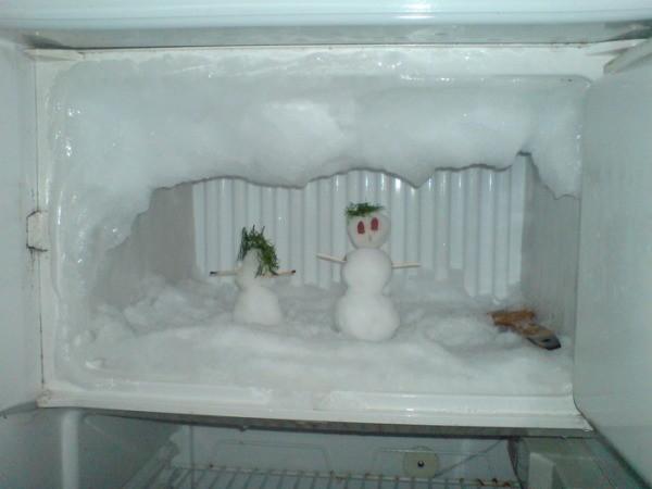 сколько размораживается холодильник